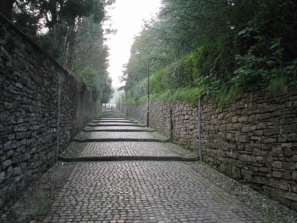Bergamas
