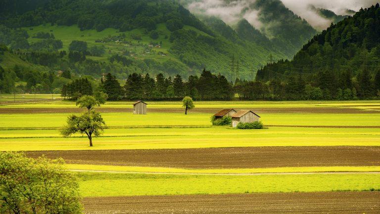 Kalnų papėdėse vystomas žemės ūkis
