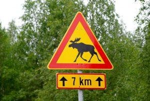 Suomijos keliai